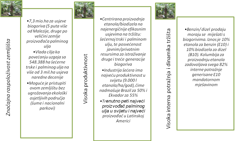 trziste_biogoriva_kolumbija